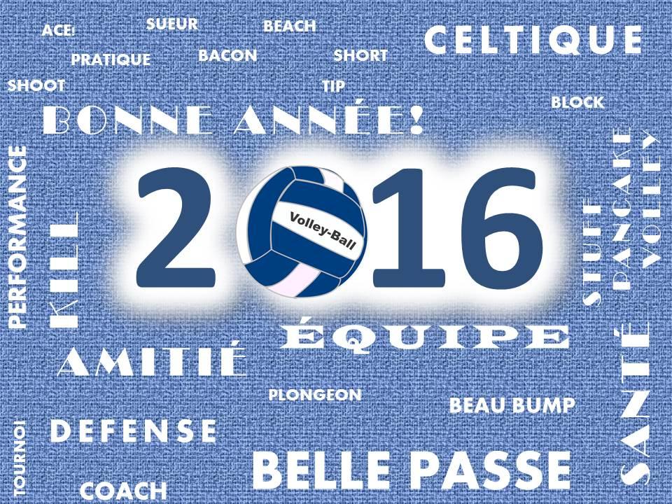 Volley2016